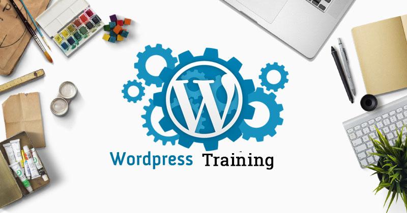 wordpress-training-in-jalandhar