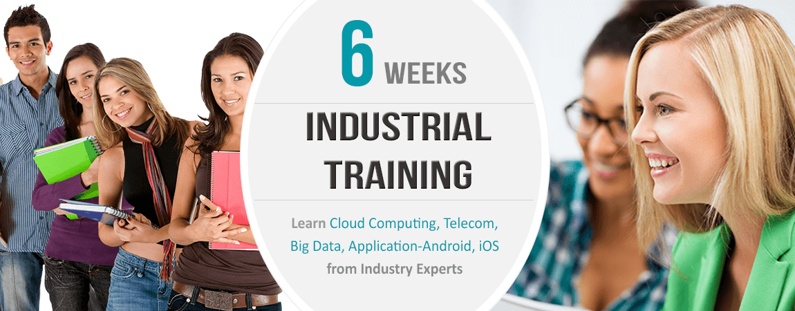6 weeks training in jalandhar